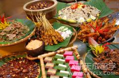 马来西亚留学生活——美食篇