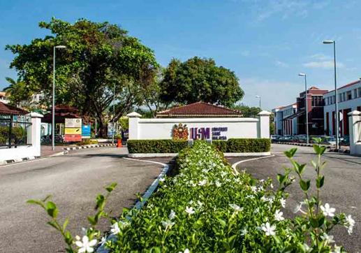 马来西亚理科大学在影响排名中位列第39位